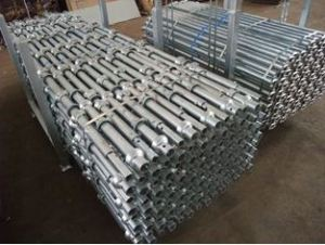 Cuplock Scaffolding Standard/Vertical with Top Quality